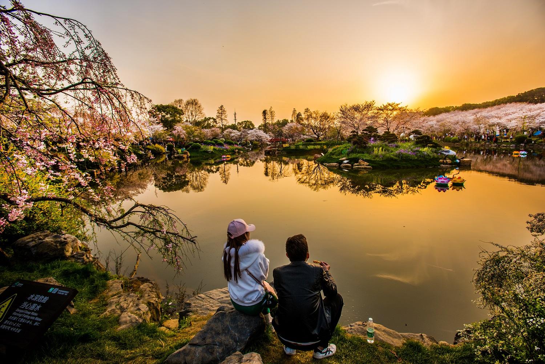 辽宁省政务网_人文东湖-武汉东湖生态旅游风景区管理委员会